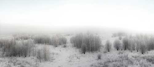 Barren landscape in Lithuania