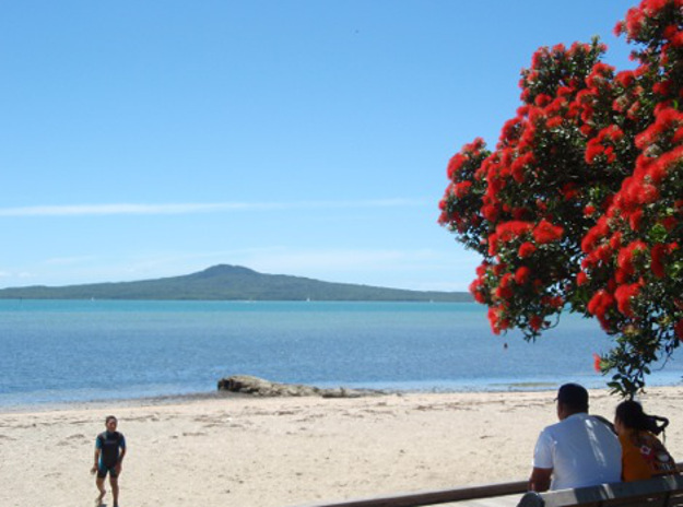 A view of Rangitoto from Tamaki Drive. Image courtesy of Tracey Whitmey