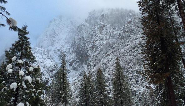 California in winter