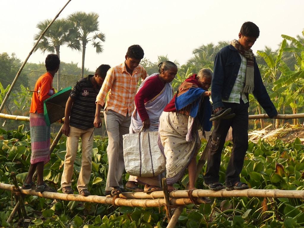 crossing - T.bhadra