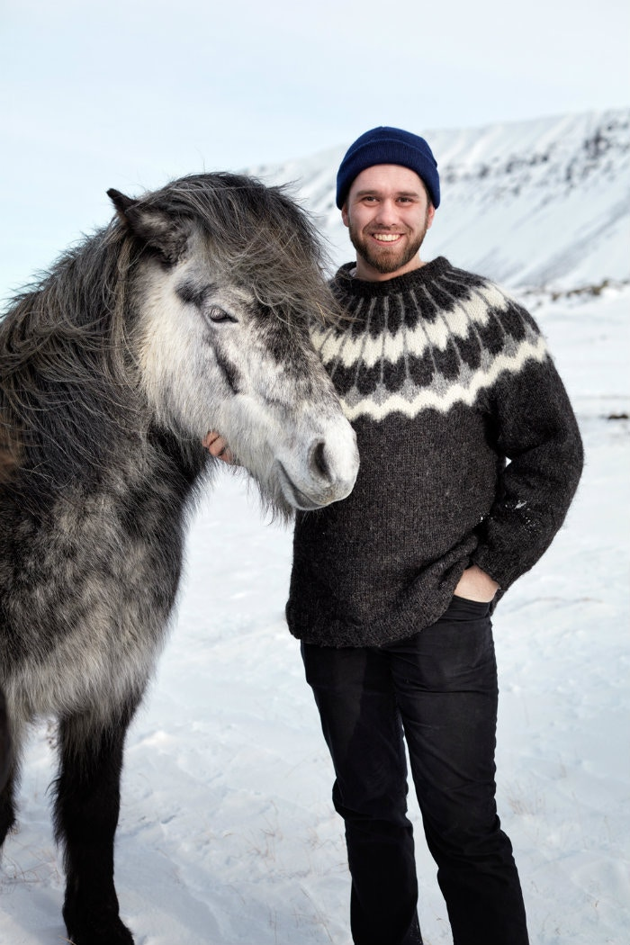 Horsing around in Skard, West Iceland © Jonathan Gregson / Lonely Planet