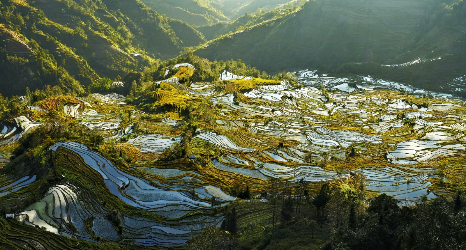 Seen from the Laohuzui viewpoint, the Yuanuang terraces rise up to 2,000 metres high © Alessandra Meniconzi