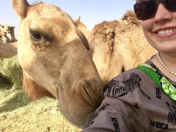 Lauren_camels