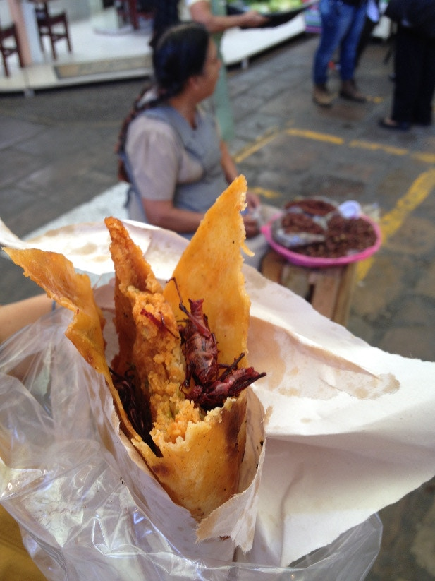 A street food snack with chapulines