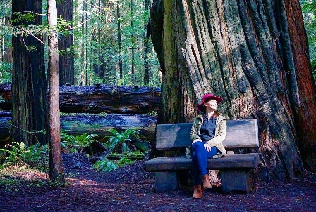 Pathfinders pics: California's Redwood Coast