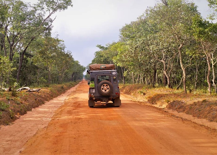 Pathfinder pics: family adventures in Zambia and Tanzania