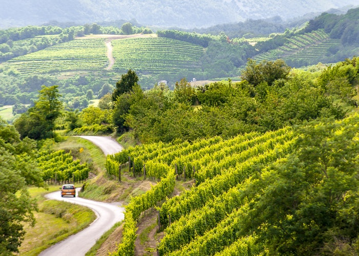 Pathfinder pics: exploring Slovenia's Vipava Valley, one of our top European destinations for 2018