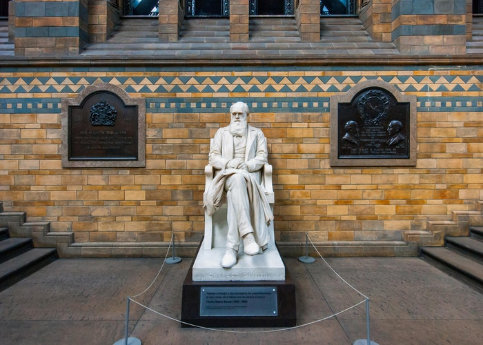 Wonderings: what can Charles Darwin teach us about travel?