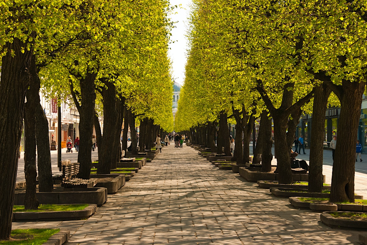Kaunas Travel Central Lithuania Lithuania Lonely Planet