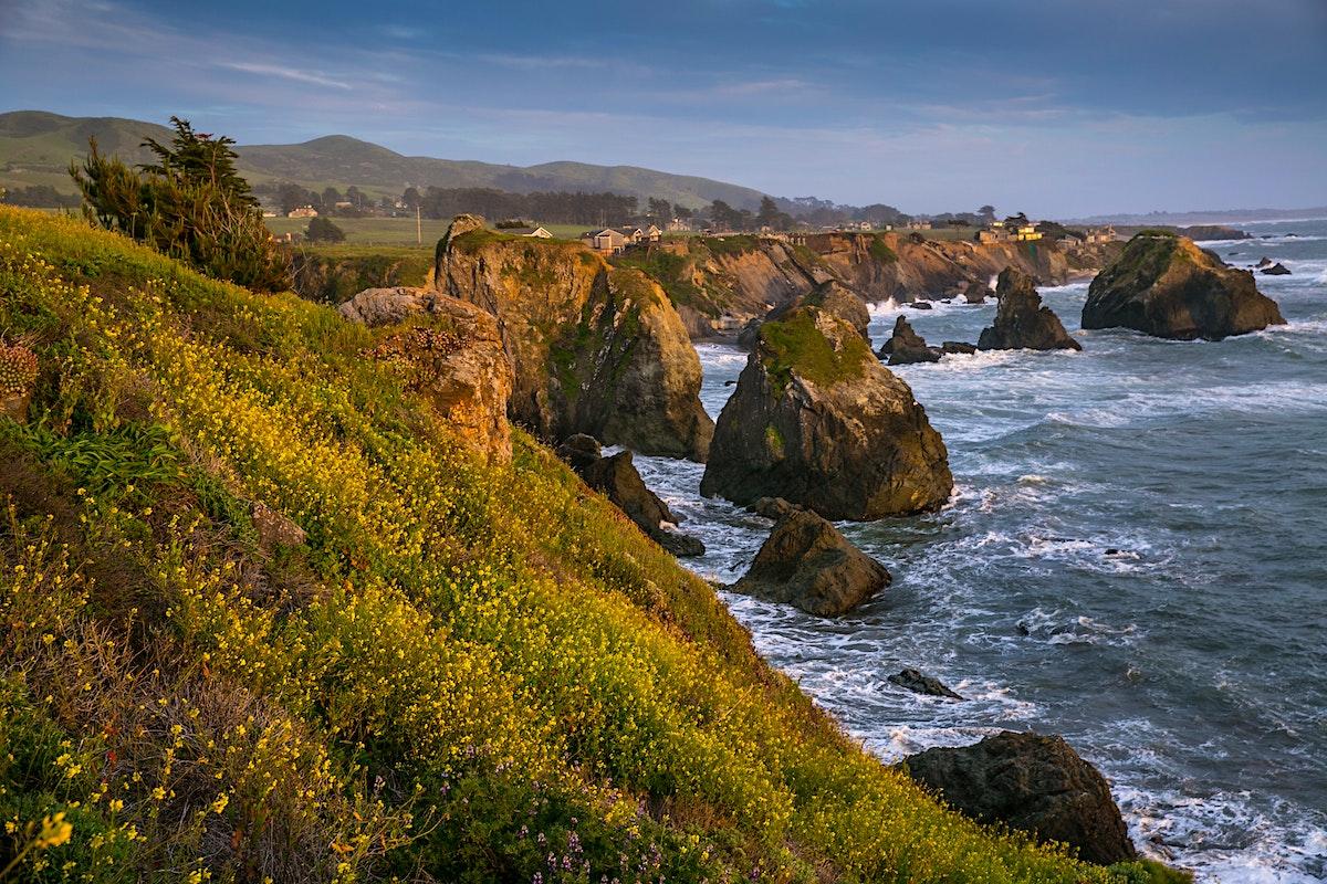 Coastal Highway 1 Travel California Usa Lonely Planet