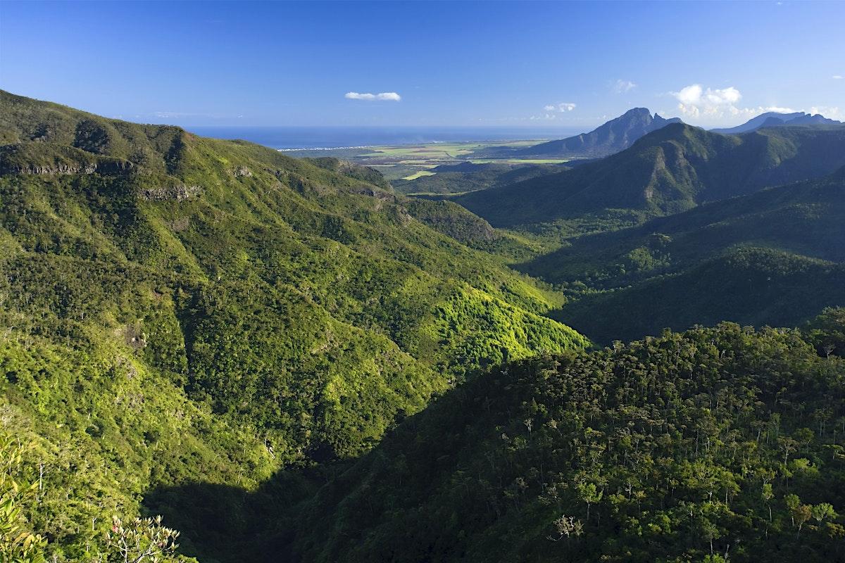 Black River Gorges National Park Travel Mauritius