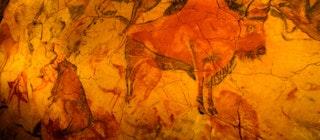 Risultato immagini per neocueva de Altamira,