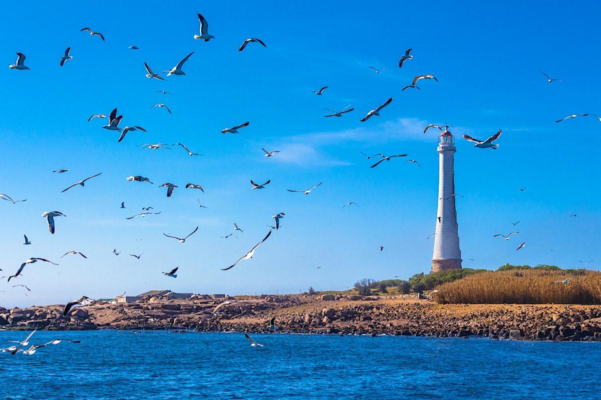 Punta del Este travel   Eastern Uruguay, Uruguay - Lonely Planet