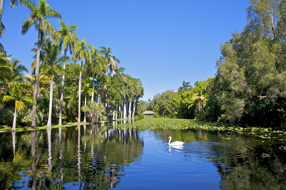 Health Insurance Florida >> Southeast Florida travel | Florida, USA - Lonely Planet