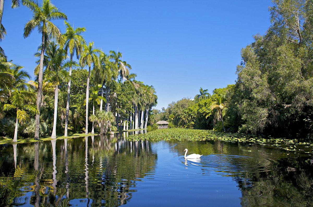 Southeast Florida Travel Florida Usa Lonely Planet