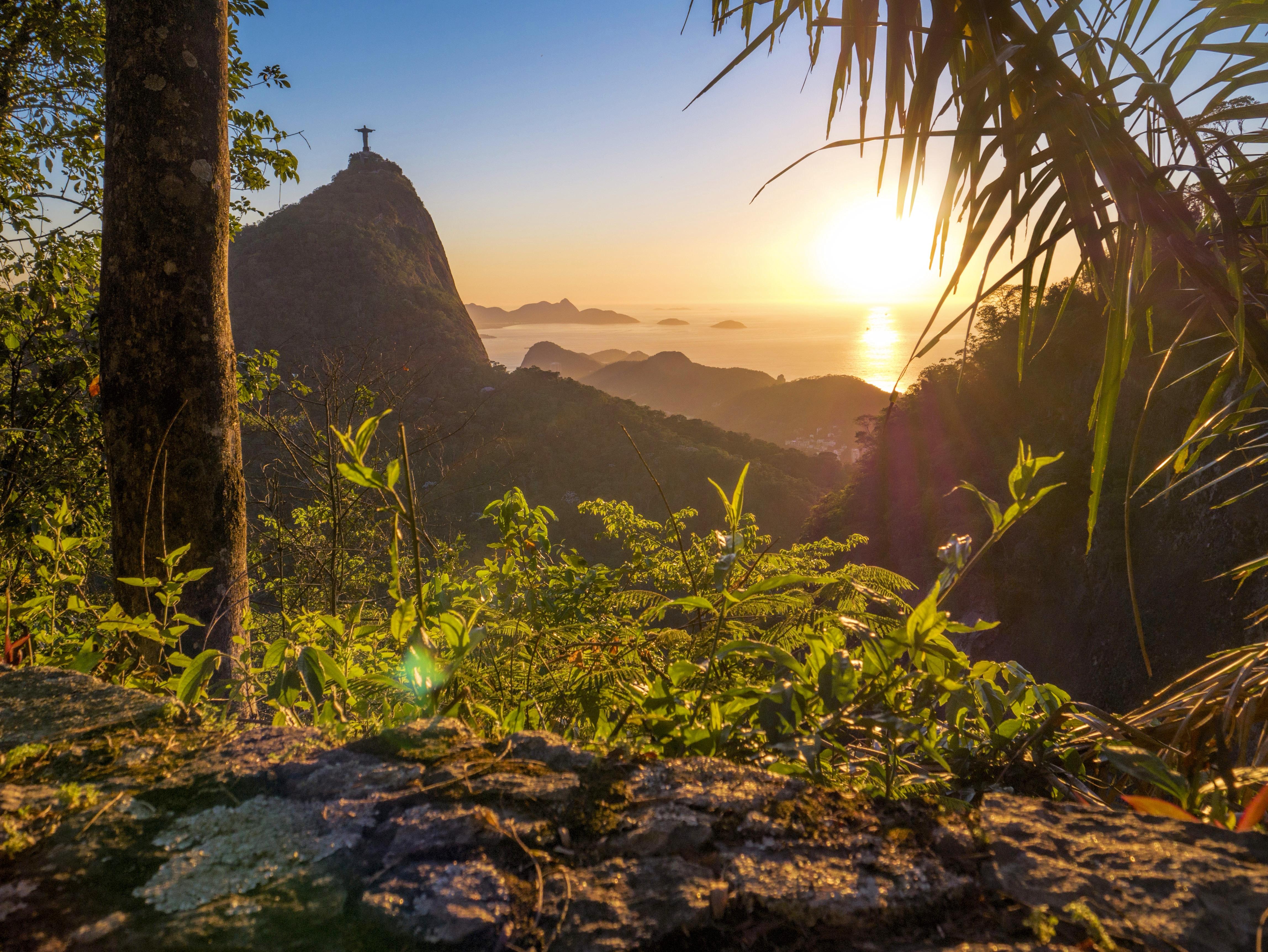 Parque Nacional Da Tijuca In Rio De Janeiro Brazil