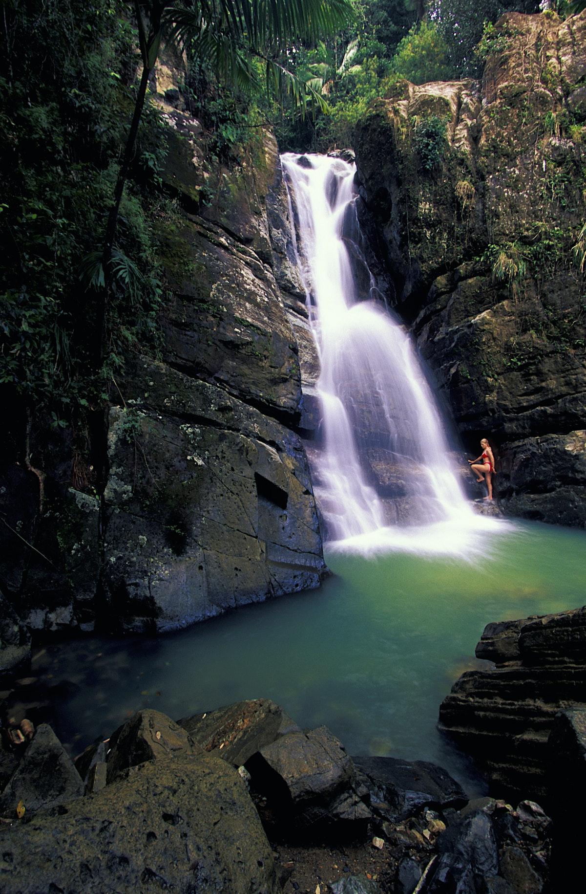 El Yunque Travel Puerto Rico Lonely Planet