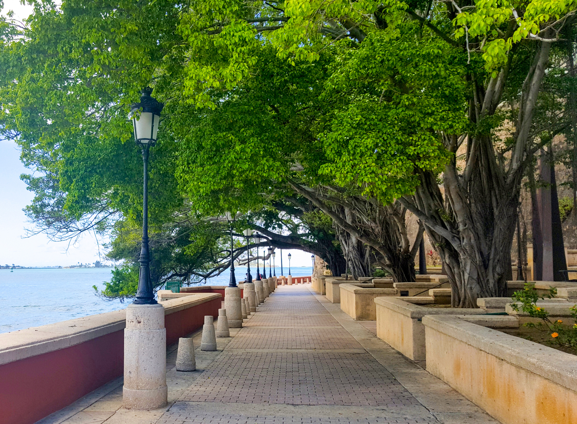 Paseo De La Princesa San Juan Amp Around Puerto Rico Attractions Lonely Planet