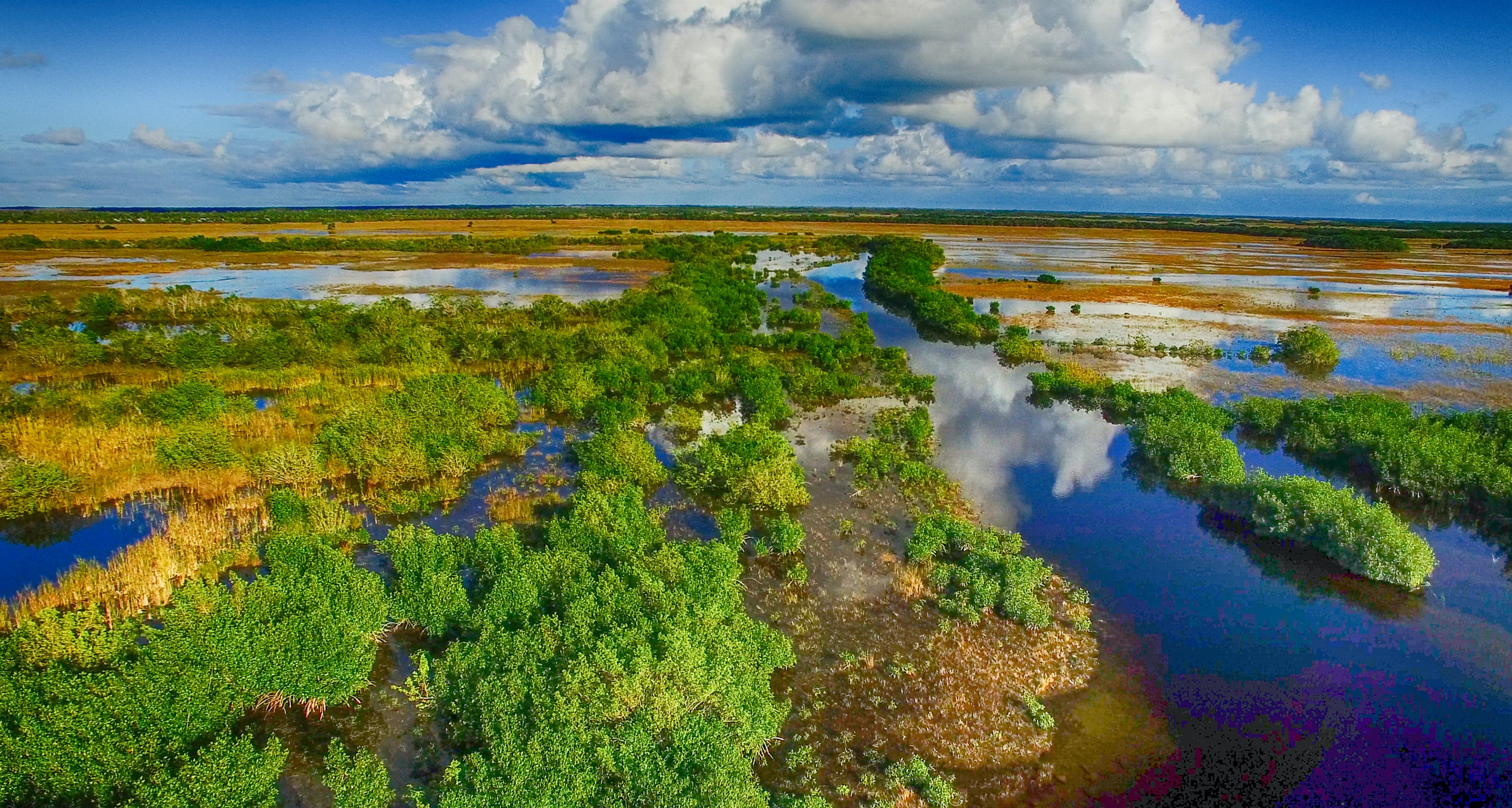 The Everglades Travel Usa Lonely Planet