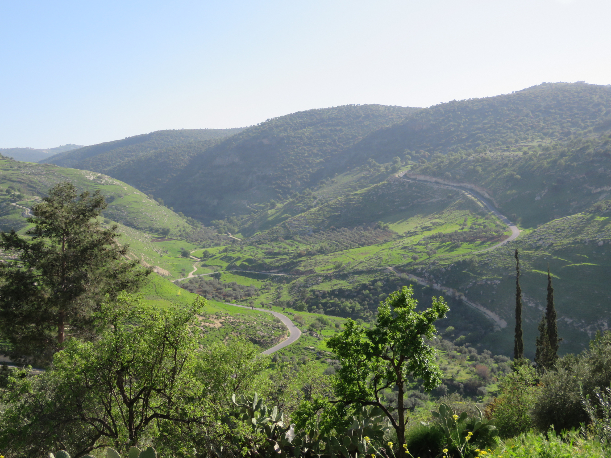 Northwestern Car Insurance >> Ajloun Forest Reserve | Northwestern Jordan, Jordan Northwestern Jordan - Lonely Planet