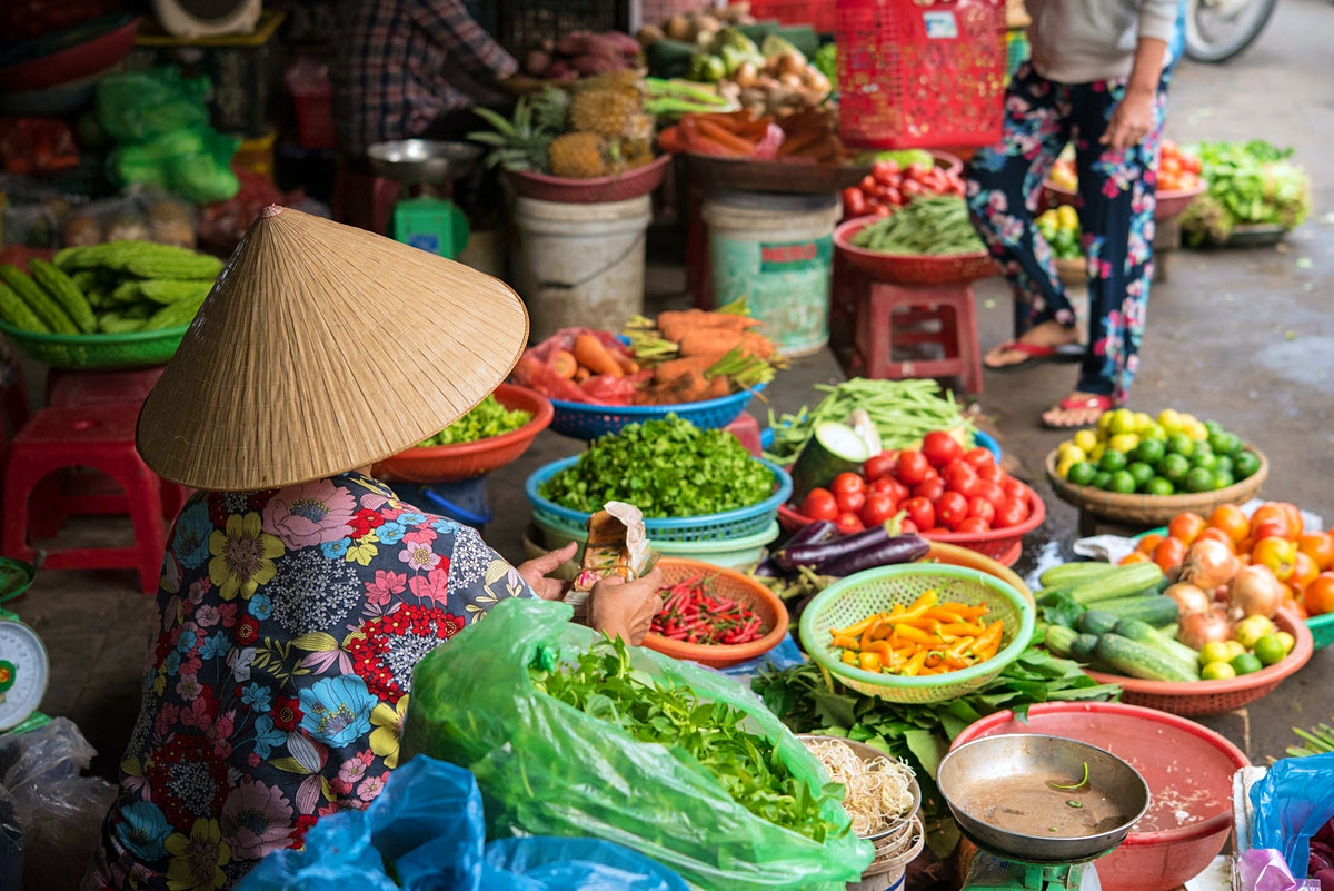 vietnam travel asia lonely planet