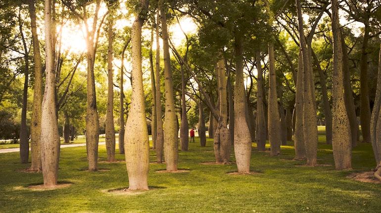 Jardines del turia in valencia spain lonely planet - Hotel jardines del turia ...