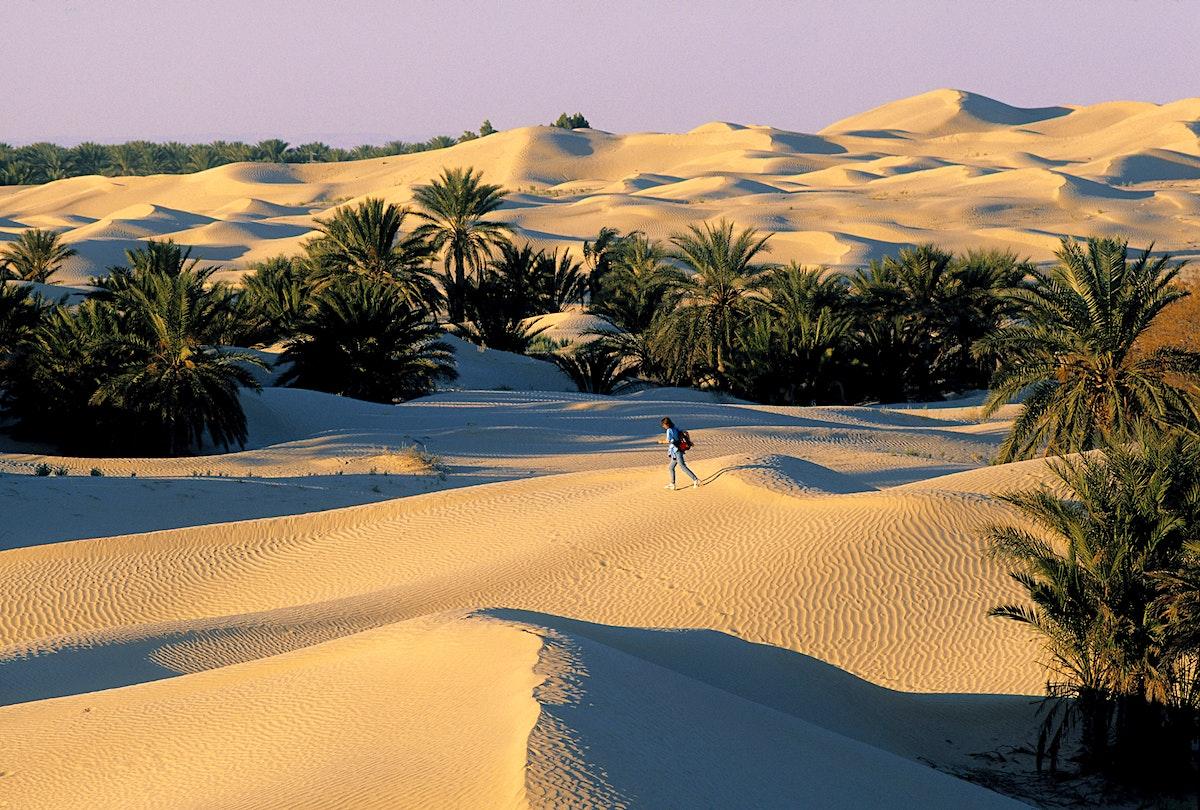Douz Travel Tunisia Lonely Planet