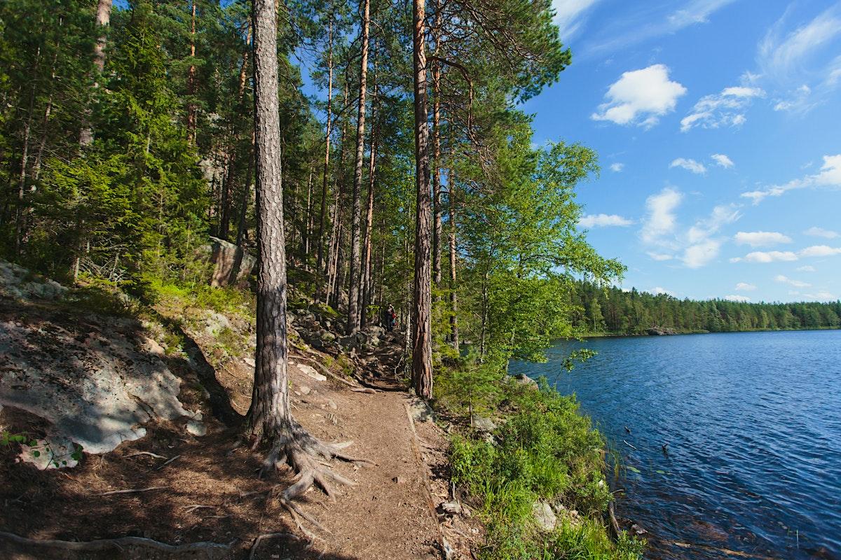 Saariselk 228 Wilderness Amp Urho Kekkonen National Park Travel