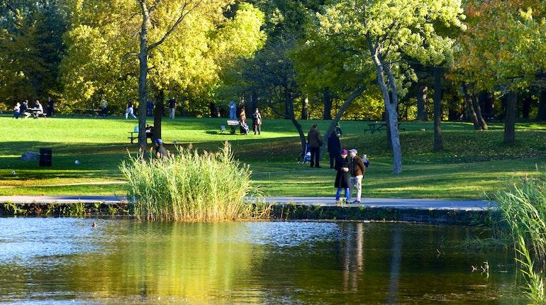 Car Rental Montreal >> Parc du Mont-Royal in Montréal, Canada - Lonely Planet