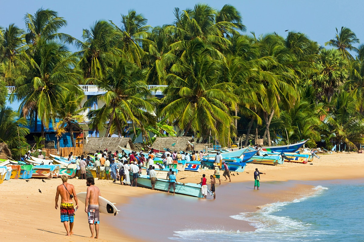 Arugam Bay Travel The East Sri Lanka Lonely Planet