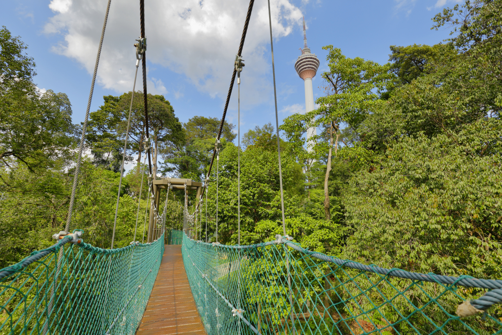 Kl Forest Eco Park Kuala Lumpur Malaysia Attractions
