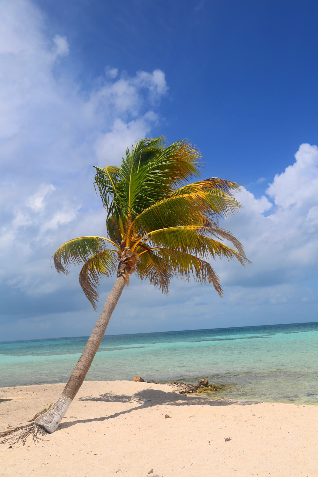 Belize City, Belize Attractions - Lonely Planet