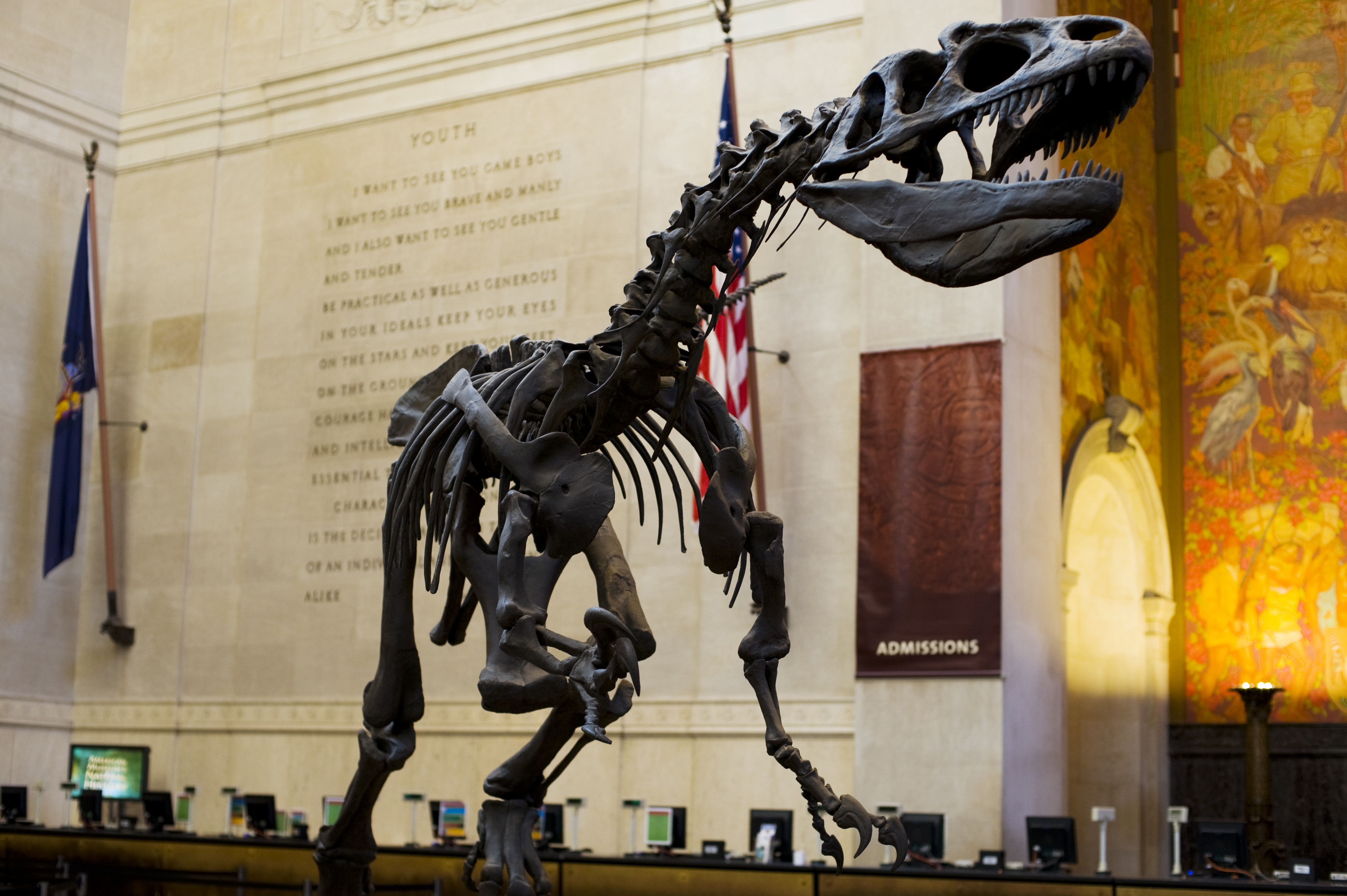 American Museum Of Natural History New York City Usa