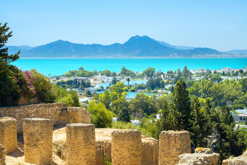 immobilier a Tunis