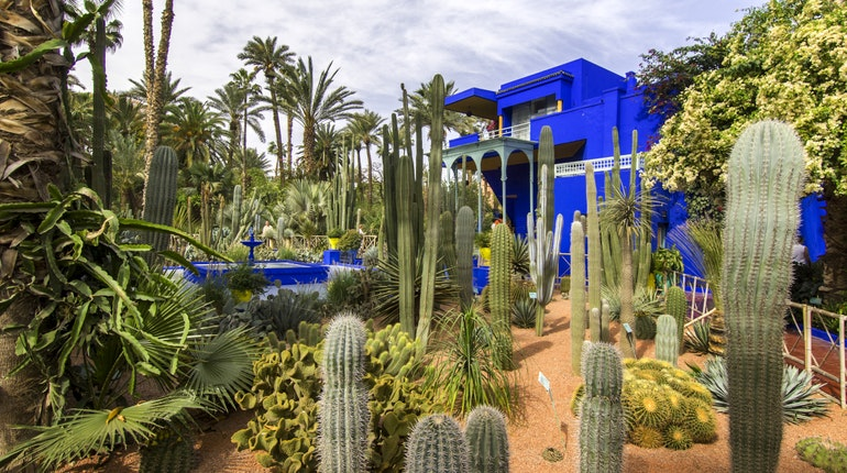 Jardin majorelle in marrakesh morocco lonely planet for Jardin majorelle