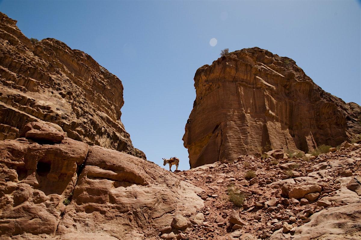 No Money Down Car Insurance >> Wadi Musa travel | Jordan - Lonely Planet