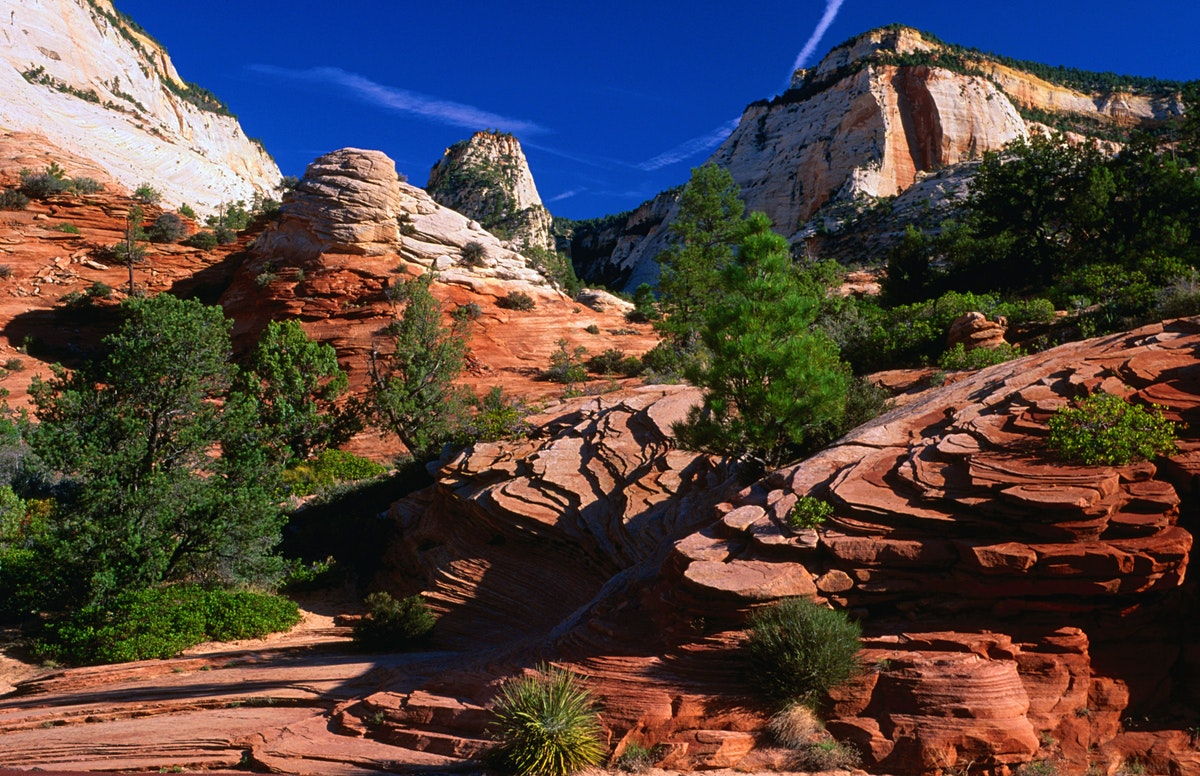Zion National Park Travel The Southwest Usa Lonely Planet