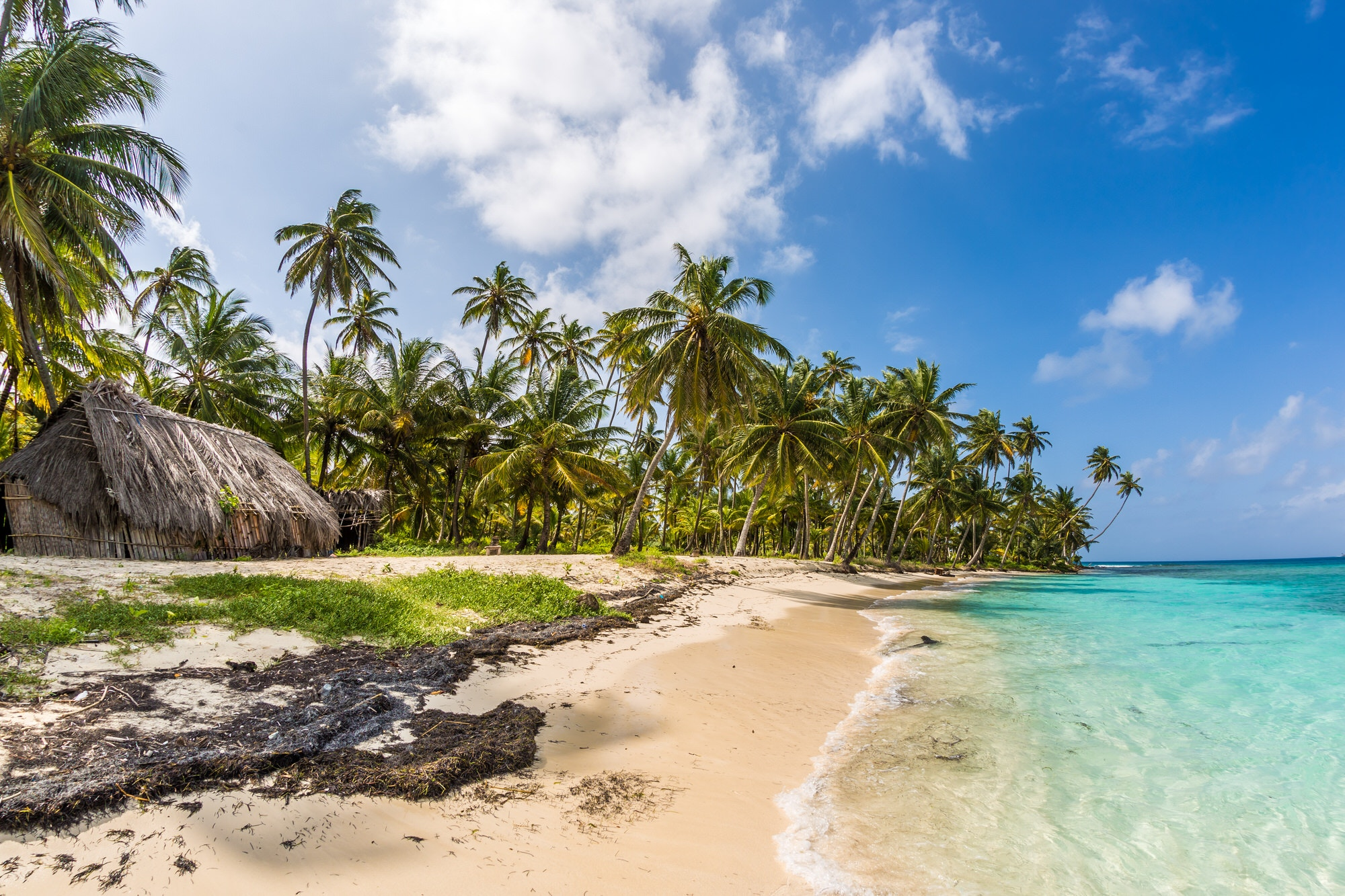The palm-fringed shoreline of the San Blas Islands, Panama © Andy Troy / 500px