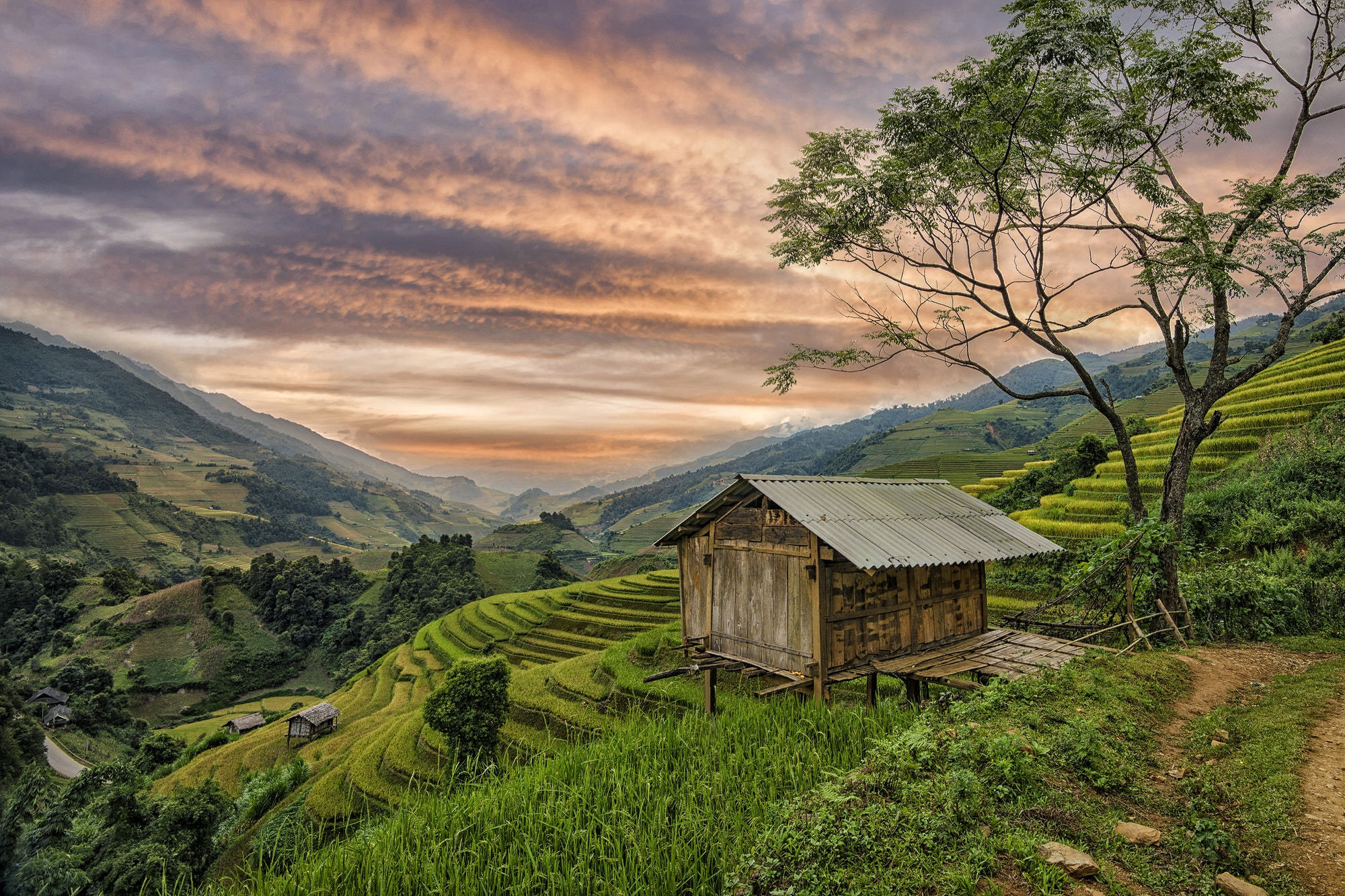 Small house overlooking the green rice terraces of Sapa, Vietnam