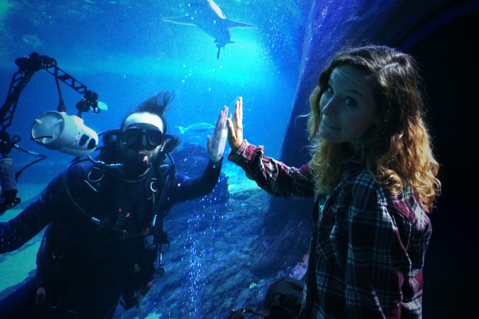 Kelsey presses her hand to the glass of an indoor aquarium while a man in a diver suit presses back from the other side