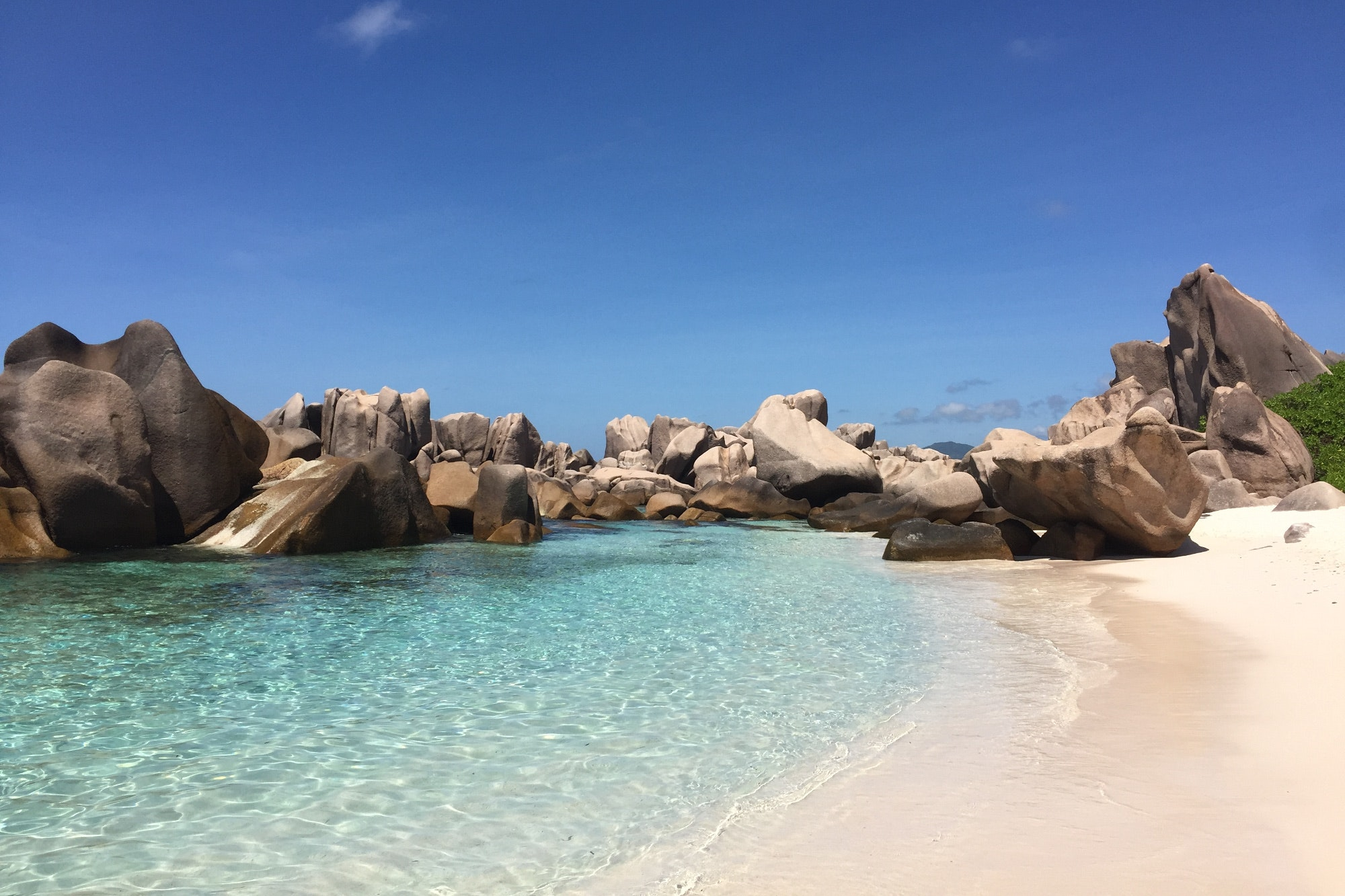 Just back from: the Seychelles, Portugal, Mauritius and Honduras