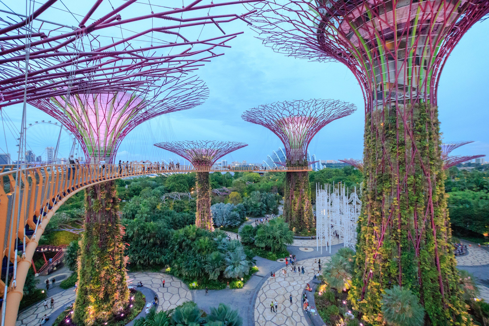 View from the walkway on The Supertree Grove at Gardens by the Bay in Singapore