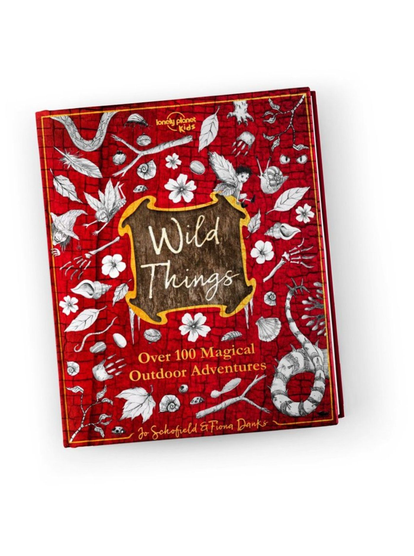 In the studio with Peter Williamson, illustrator of Wild Things – Lonely Planet's travel blog