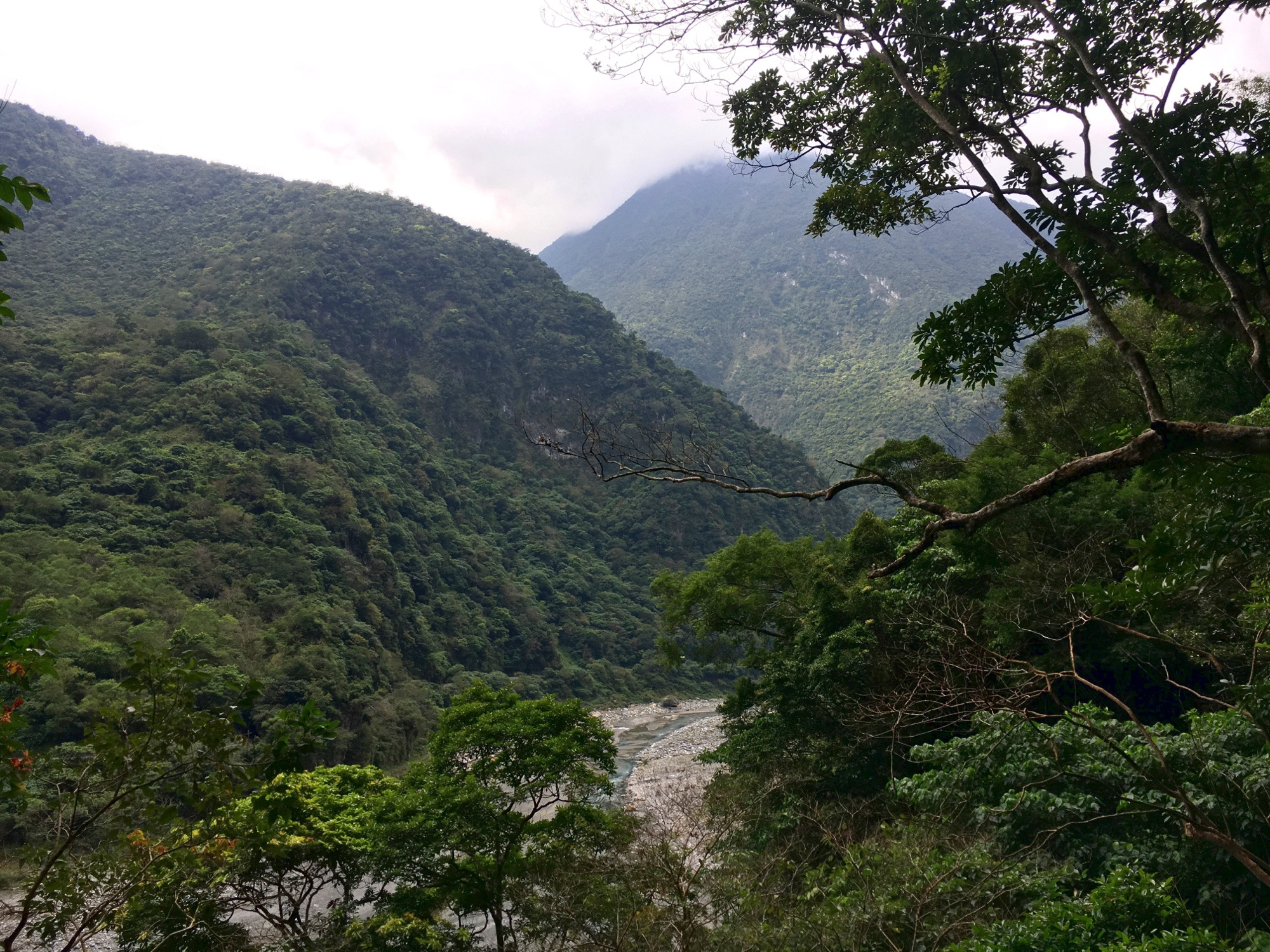 Northeastern Taiwan is a blanket of green forest