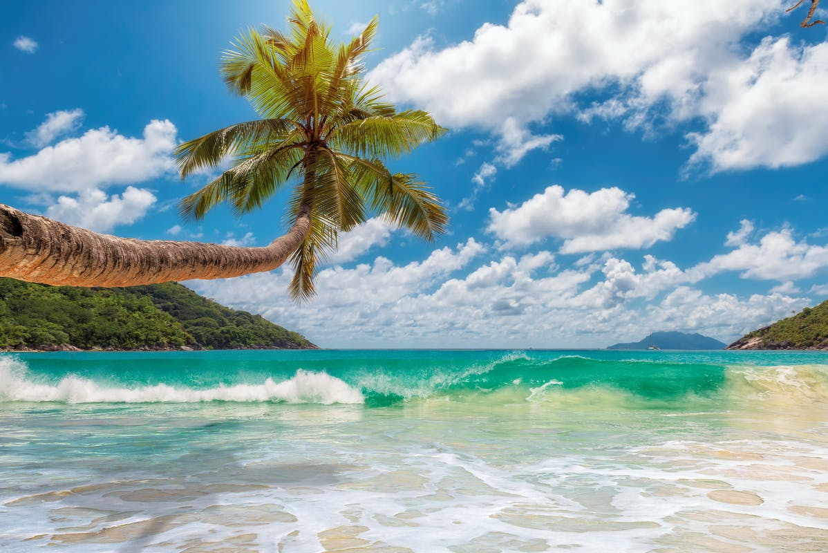 Tropical Island Beach Ambience Sound: Beaches, Coasts And Islands