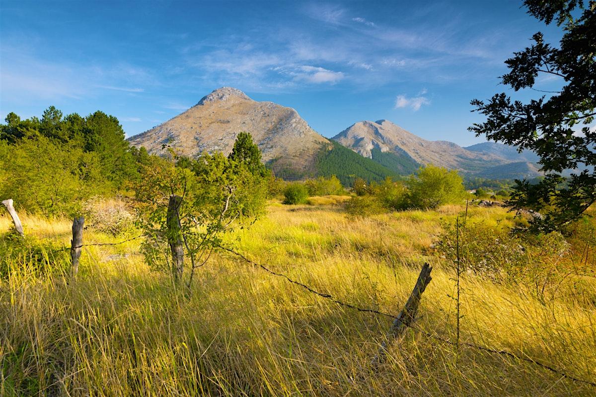 Lovćen National Park Travel Montenegro Lonely Planet