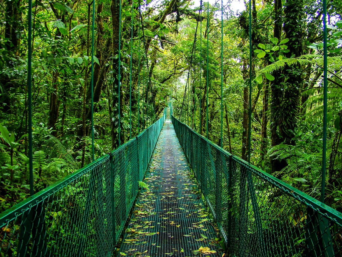 Northwestern Car Insurance >> Monteverde & Santa Elena travel | Northwestern Costa Rica, Costa Rica - Lonely Planet