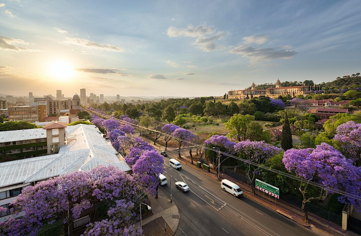 Date South Africans In Pretoria