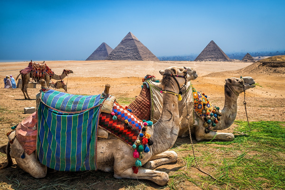 Cairo travel  Lonely Planet