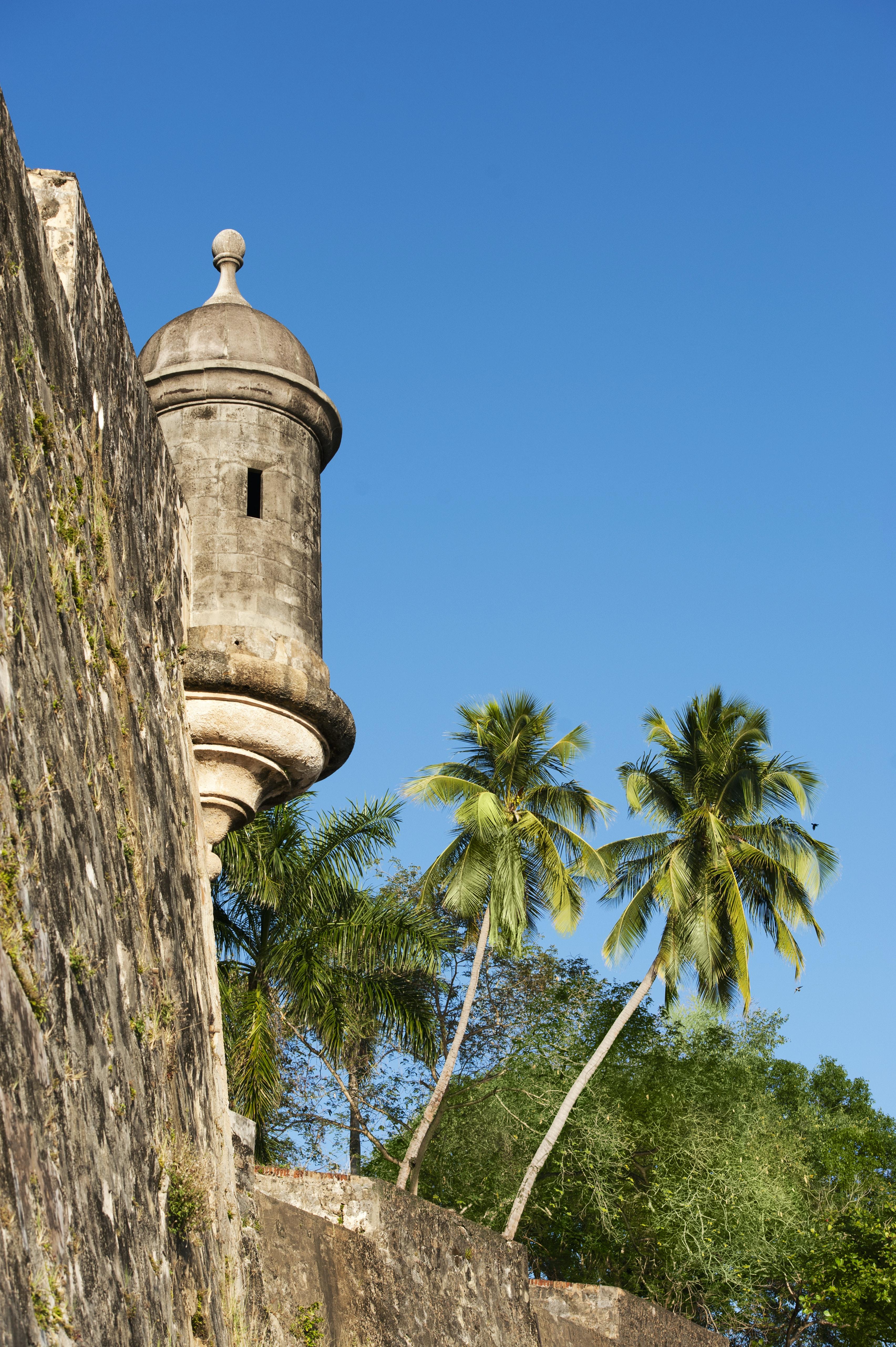 Best option healthcare puerto rico inc